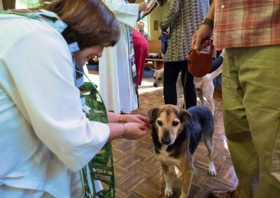 blessing-of-the-animals-19